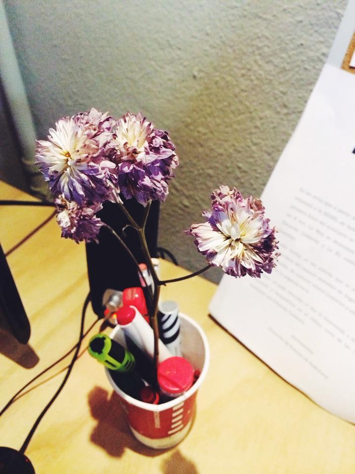 Flores de escritorio